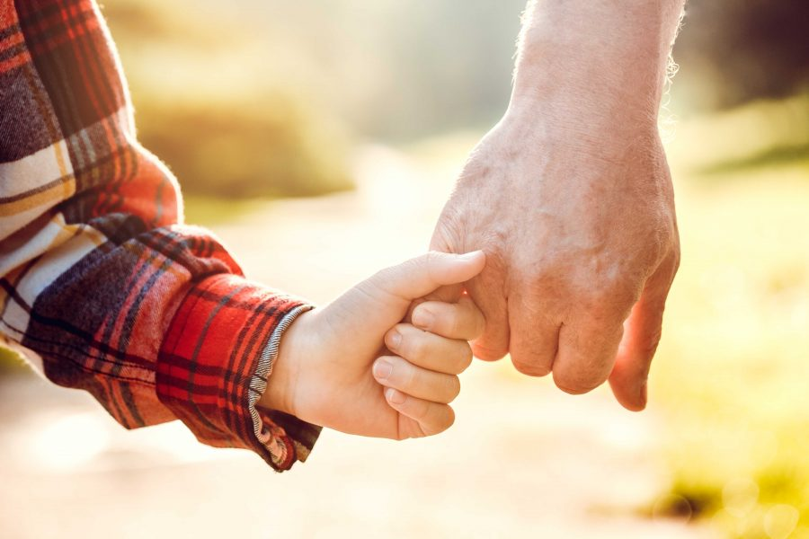 Yes or No: Do grandparents have rights?