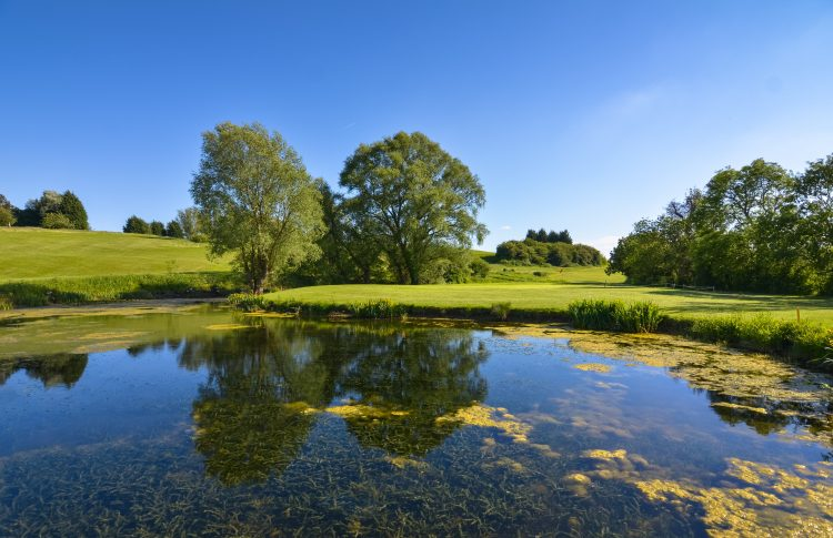 Image of golf course at Toft Golf Club